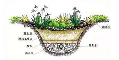 雨水生物滞留渗滤系统