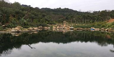 流域水环境水质改善生态修复集成技术