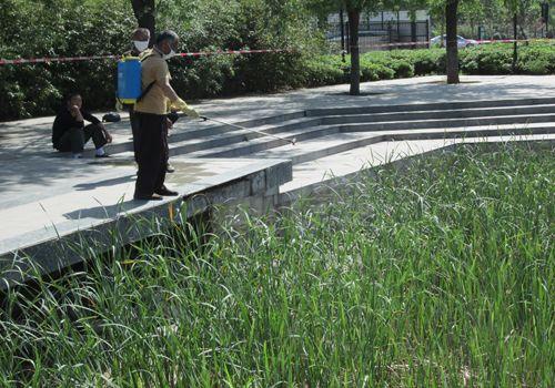 郑州莲湖湿地改建工程示范项目